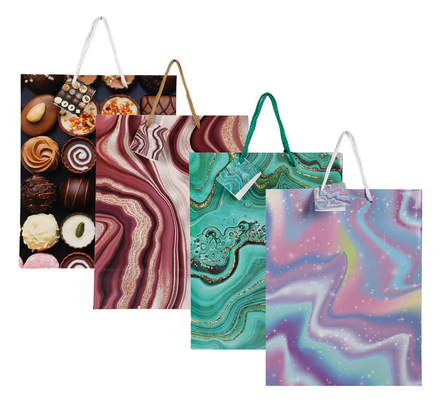Large Everyday Gift Bag