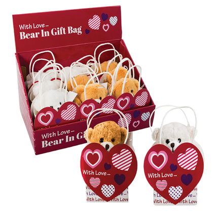 Love Bear in Giftbag