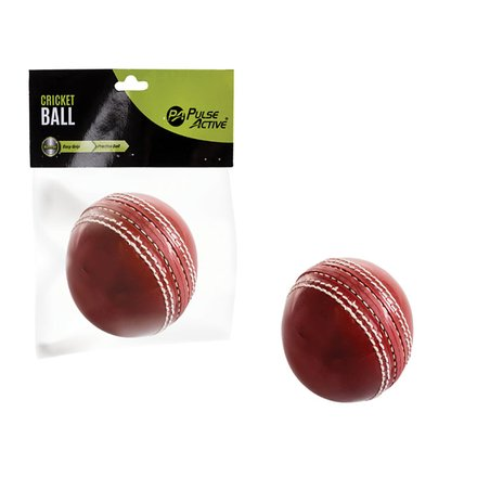 Practice Cricket Ball