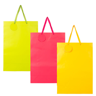 Solid Colour Gift Bag