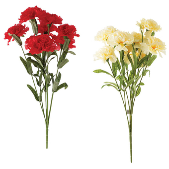 Bunch Of Flowers Carnations