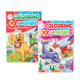 Colouring Adventure Fun